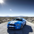 Ford Shelby Mustang Alt